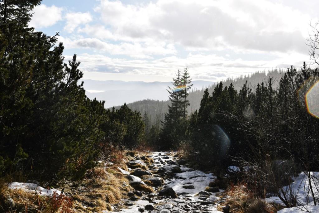 Hohe Tatra Wanderung Winter