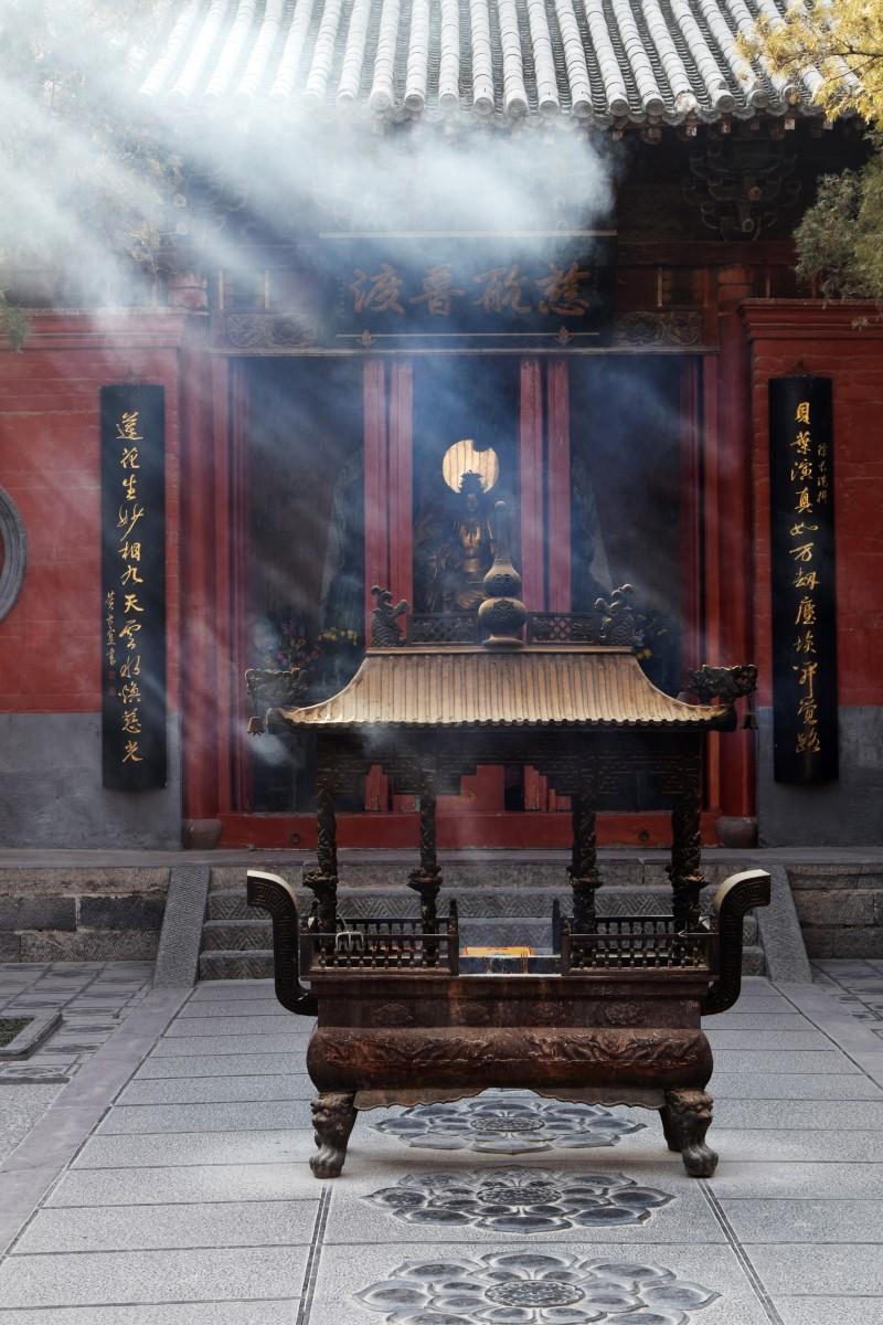 tempelpferd02 (Andere)